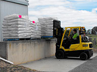 wrapped pallets being loaded with a forklift at Frances seeds